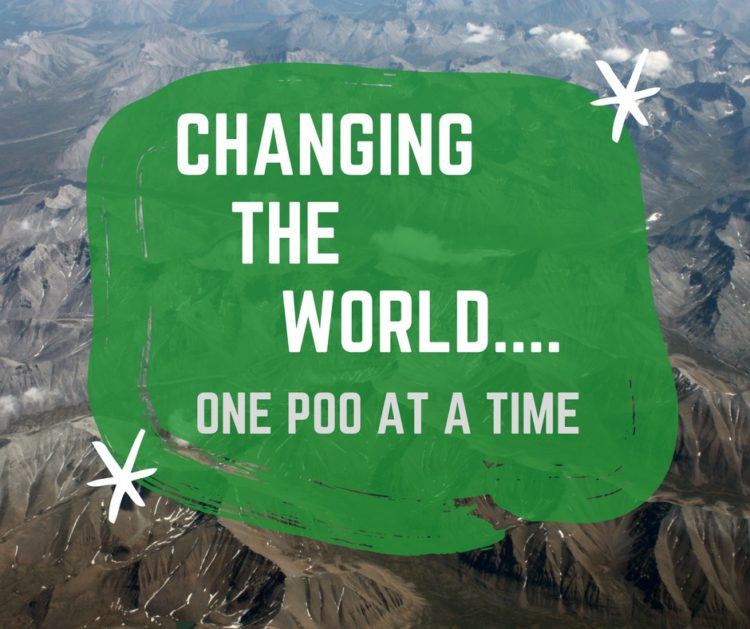 Composting Toilet System Change the World